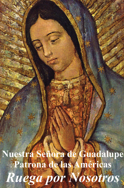 *SPANISH* Religious Liberty Prayer Card - Our Lady of Guadalupe